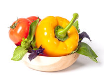 Tomato, pepper, red and green basil Royalty Free Stock Image