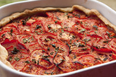 Tomato pie Royalty Free Stock Photography