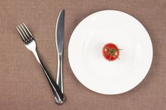 Tomato on the plate Stock Photography