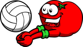 Tomato playing volleyball Stock Photography