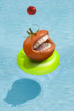 Tomato on pool Stock Photos