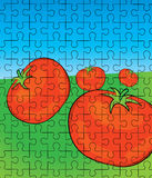 Tomato puzzle pattern Stock Photo