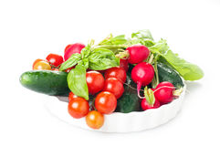 Fresh spring vegetables. Tomato, radish, cucmber and basil in white background Royalty Free Stock Image