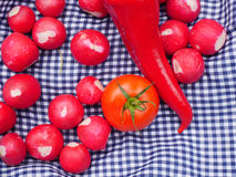 Tomato, radish and pepper picnic food for ecotourism. In Romania Stock Photos