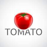 Tomato realistic poster Stock Image