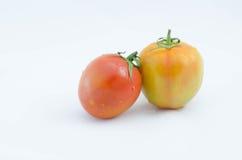 Tomato. Red fresh tomato on isolated white background Stock Image