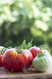 Tomato red and green Stock Photo