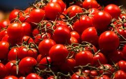 Tomato. Red healthy tomato Stock Photo