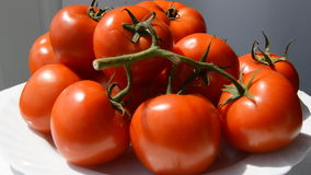 Tomato Red Juicy Spin stock footage