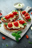 Tomato Ricotta Bruschetta with sun dried tomatoes paste, olive oil brown bread and basil Stock Images