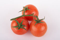 Tomato Ripe Stock Photo