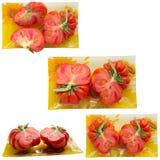 Tomato Ripe. Stock Photo