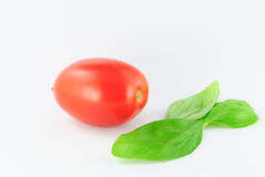 Tomato (roma - solanum lycopersicum) with green leaves Stock Image