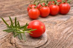 Tomato and rosemary Stock Photography