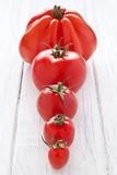 Tomato row. Selection of tomatoes in a row Stock Photos