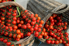 Tomato's in baskets stock photography