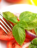 Tomato salad. Tomato and basil salad -food background Royalty Free Stock Images