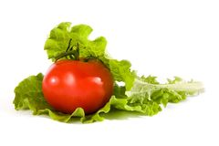 Tomato and salad Stock Image