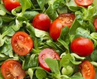 Tomato salad. Cherry tomatos and corn salad as background Stock Image