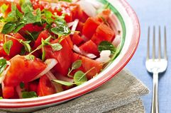 Tomato salad Royalty Free Stock Image