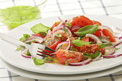 Tomato salad. With onions and basil leafs royalty free stock photography