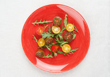 Tomato salad with arugula Royalty Free Stock Photo