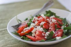 Tomato salad with basil, cheese, olive oil and garlic dressing o. N white background royalty free stock images
