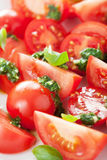 Tomato salad with basil dressing Royalty Free Stock Image