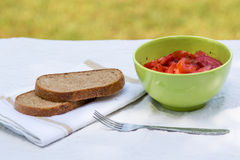 Tomato salad with brown bread Stock Photography