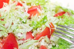 Tomato salad with Chinese cabbage Royalty Free Stock Photo