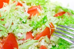 Tomato salad with Chinese cabbage Stock Images