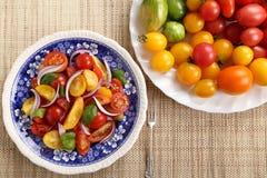 Tomato salad. Stock Image