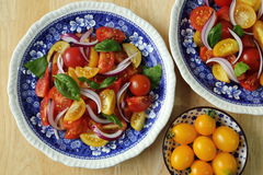 Tomato salad. Stock Photos
