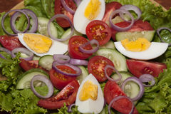 Tomato salad with cucumber, egg and onion Stock Photography