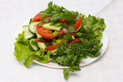 Tomato salad with cucumber and onion Stock Photos