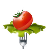 Tomato with salad on fork isolated Royalty Free Stock Photos