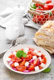 Tomato salad with fresh red onion and feta cheese Royalty Free Stock Photo