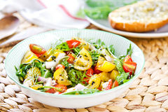 Tomato salad with Grilled cheese Stock Images