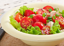 Tomato salad with lettuce, cheese Stock Photography