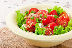 Tomato salad with lettuce, cheese Royalty Free Stock Images