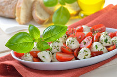Tomato salad with mozzarella Royalty Free Stock Images