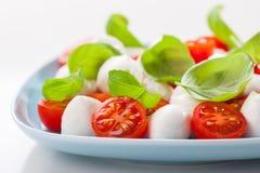 Tomato salad with mozzarella Stock Photos