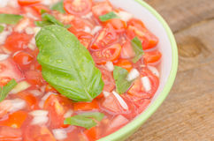 Tomato salad with onion and basil Royalty Free Stock Images