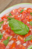 Tomato salad with onion and basil Royalty Free Stock Photos