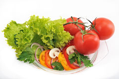 Tomato salad with onions peppers mushrooms on a white background Stock Image