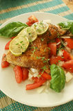 tomato salad with roasted chicken and lime Royalty Free Stock Images