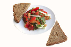 Tomato salad and rye bread Royalty Free Stock Photos