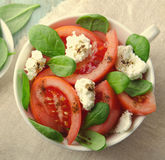 Tomato salad with spinach, cottage cheese, olive oil and pepper on blue wooden background Royalty Free Stock Photo