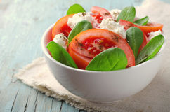 Tomato salad with spinach, cottage cheese, olive oil and pepper on blue wooden background Royalty Free Stock Photography