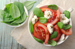 Tomato salad with spinach, cottage cheese, olive oil and pepper on blue wooden background Stock Image
